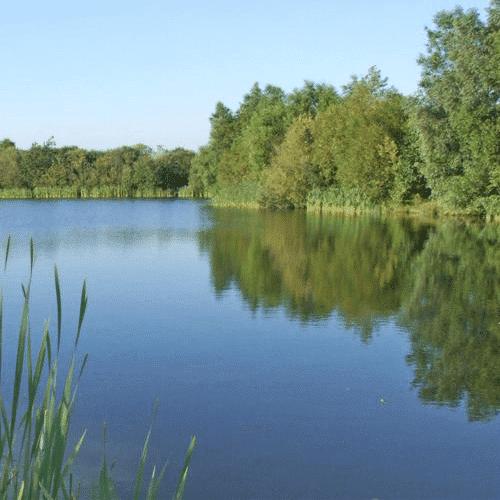 Roman Lakes